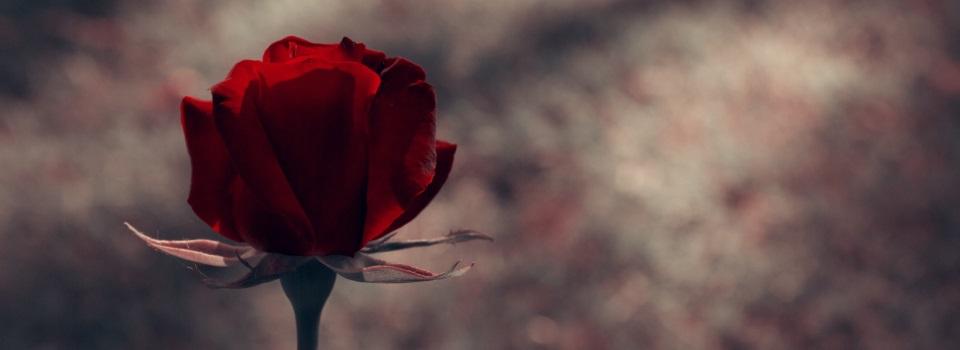 Funeral-Flower-Arrangements-Brooklyn-NY-2